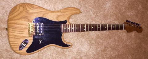 Warmoth Partscaster   Dinosaur Rock Guitar